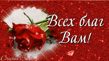 С Днем Рождения. Красивая открытка с розами.